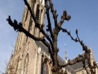 Laurens Kerk Rotterdam